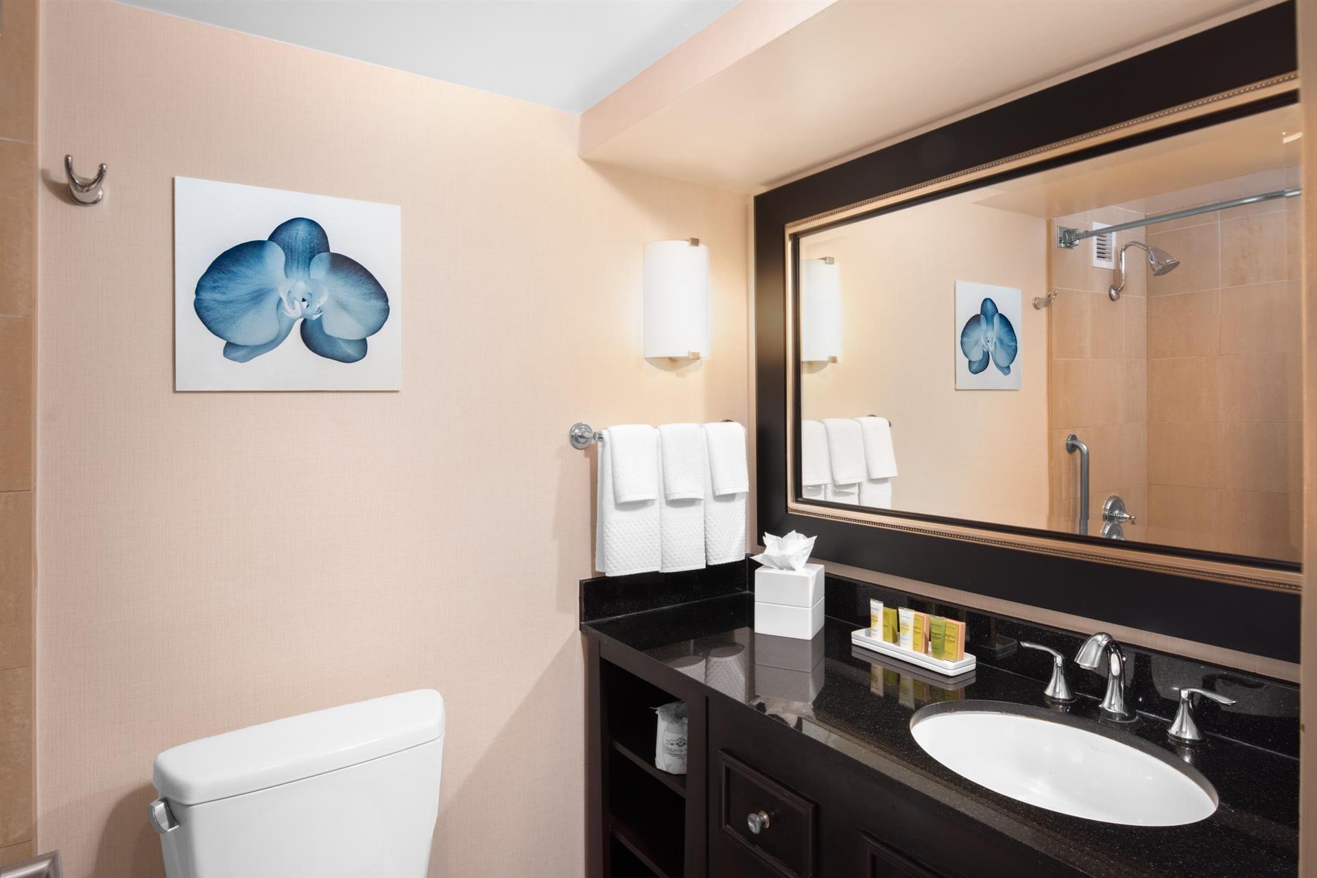 olive green bathroom decor ideas for your luxury bathroom.htm meetings and events at hilton san diego airport harbor island  san  hilton san diego airport harbor island